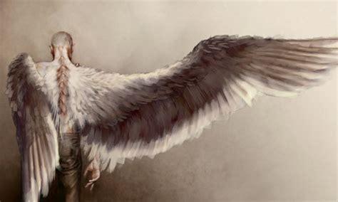 libro angel wings skellig tim roth photo 4237605 fanpop