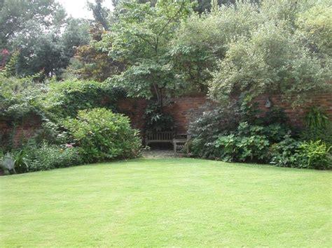 semi erba giardino erba giardino prato