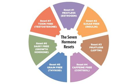 Hormone Reset Detox by 25 Best Ideas About Hormone Diet On Lose