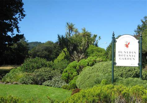 dunedin botanic gardens dunedin botanic garden dunedin gardens to visit