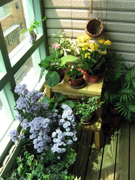 indoor garden ideas perfect  tiny spaces