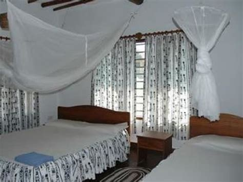 Cheap Cottages In Diani by Simba And Oryx Diani Cottages Galu