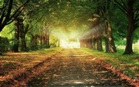 hike themes hd prachtige herfst wallpaper mooie leuke achtergronden