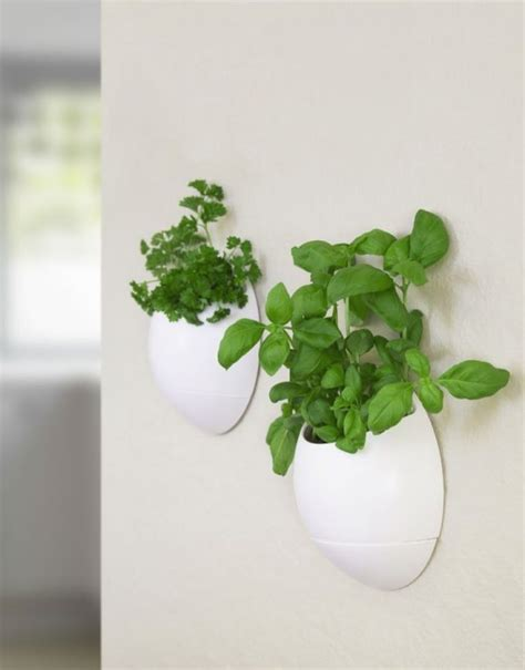 Wall Mounted Herb Planter by The Big List Of Self Watering Planters For Stylish