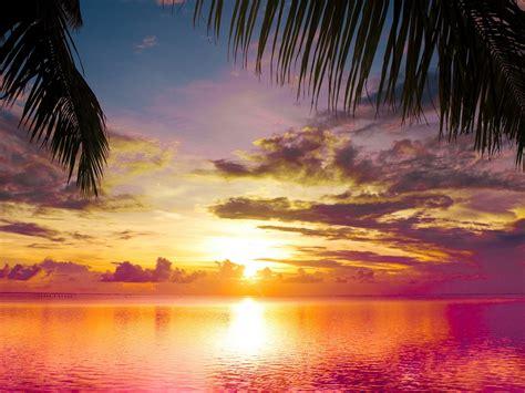 beach sunset scene  wallpaperscom