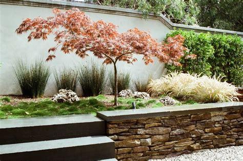 terrasse 50 wohnfläche japanischer ahorn im garten 50 gestaltungsideen