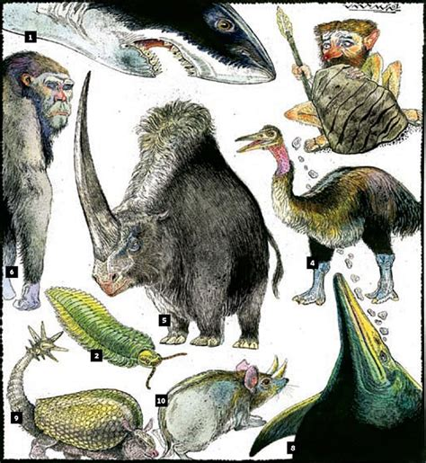 last 5 new year animals the best extinct animals from an elephant bird to a 10
