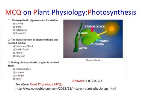 Questions Answers Plants biology mcqs choice questions