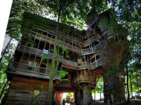 the world s largest tree house damn cool pictures