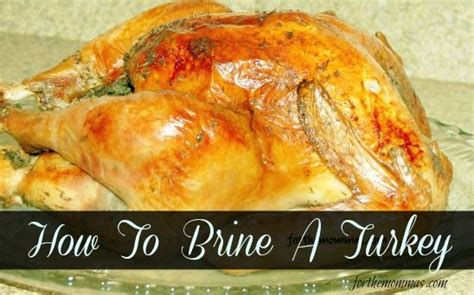 how to brine a turkey for thanksgiving how to brine a thanksgiving turkey it s all about fall