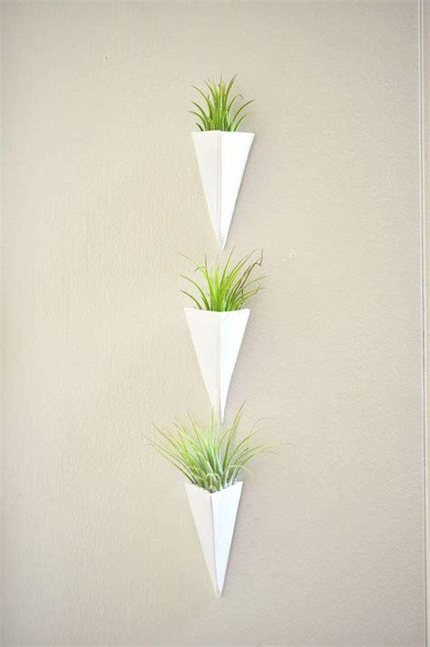 wall mount mini air plant planter white and tillandsia plant