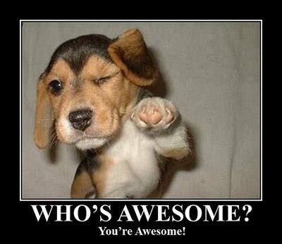 you are awesome images awesome quotes you are quotesgram