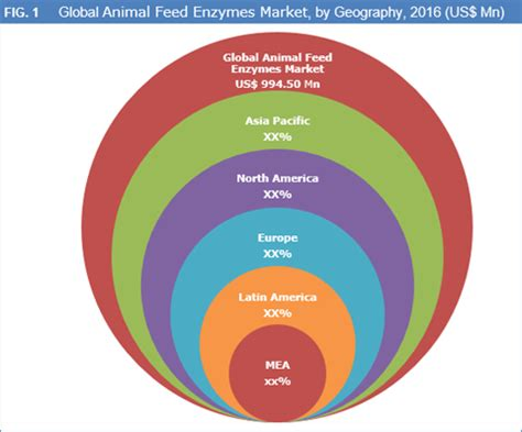 animal feed enzymes market size, share, trend and forecast