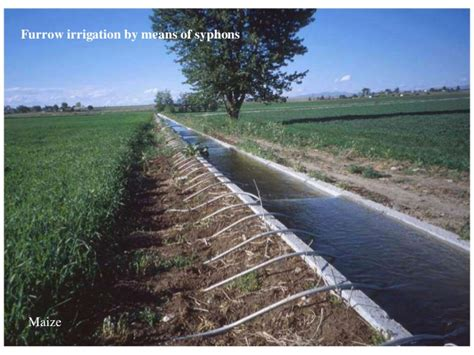 Small Basin irrigation system of pakistan