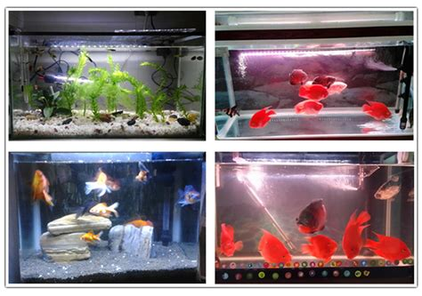 waterproof led lights for fish tanks dropship 38cm waterproof white led aquarium light fish