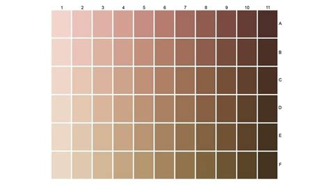 skin tone colors expert in skin and hair types worldwide l or 233 al