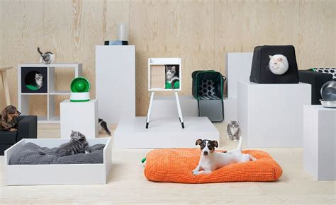 ikea dogs ikea is offering furniture for pets and it s adorable inhabitat green design innovation