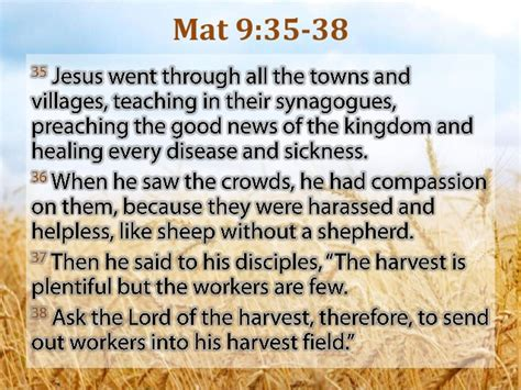 the harvest is plentiful but the workers are few the harvest are plentiful but the workers are few