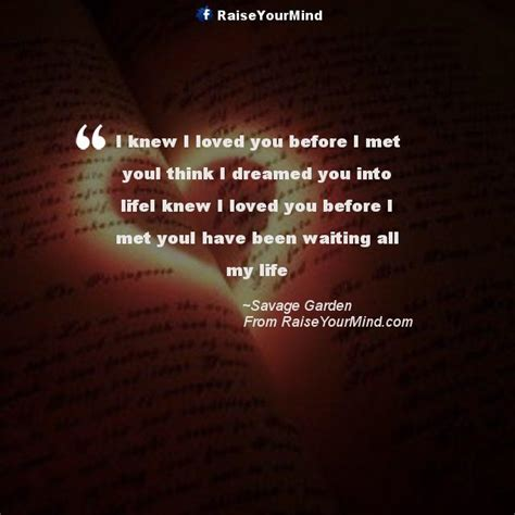 Loved You Before I Met You i knew i loved you before i met youi think i dreamed you