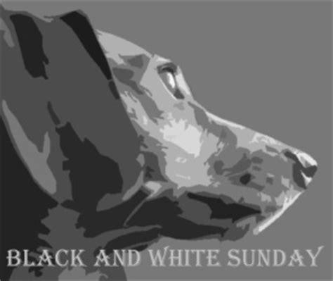black and white sunday 3/9 memoirs of a greyhound