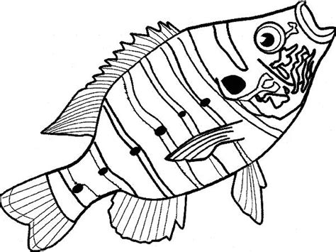 coloring pages bass fish free coloring pages of bass fishing