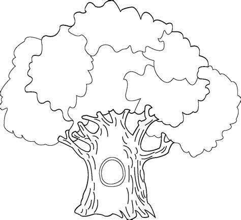 Coloring Pages Of Trees Tree Coloring Pages Dr Odd by Coloring Pages Of Trees