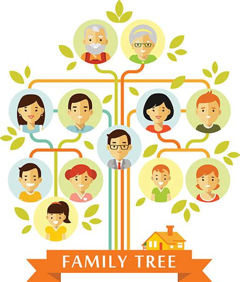 Family Tree Clip Art Vector Images Illustrations Istock Family Tree Stock Vectors Vector Clip