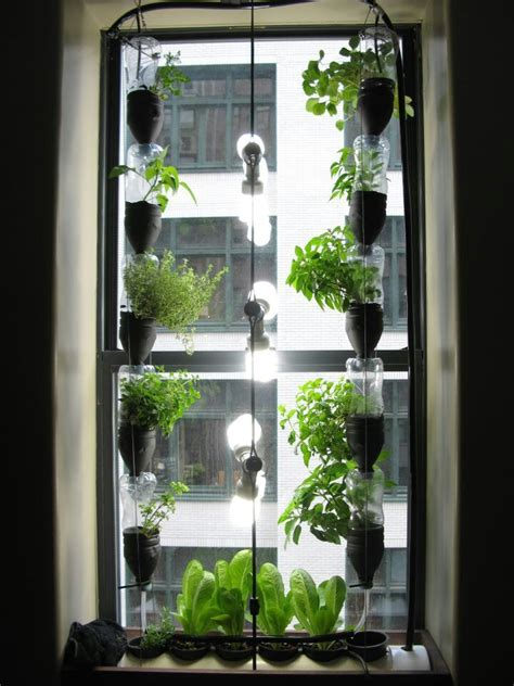 window gardening window garden hydroponics gardening