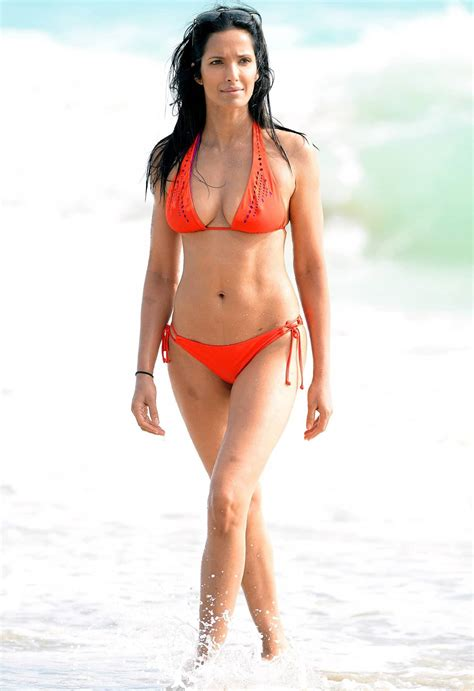 celebrity bodies best celebrity 15 of the best celebrity female beach bodies fame focus