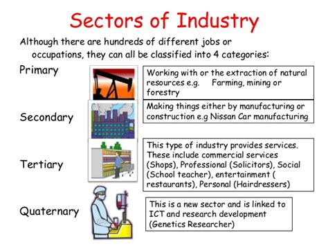 what are the sectors of the indian economy explain in