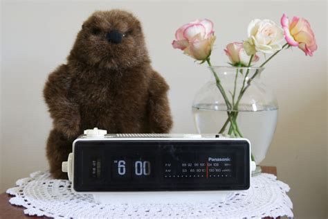 groundhog day i got you groundhog day alarm clock only plays i got you babe from