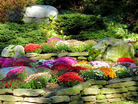 fall landscaping tips mum s galore keep akron beautiful