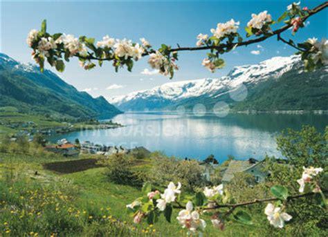 fior di norvegesi viaggio di primavera tra i fiordi itinerari in viaggio
