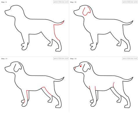 how to draw a puppy step by step how do you draw a step by step pencil drawing