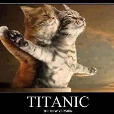 imagenes motivadoras graciosas fotos graciosas