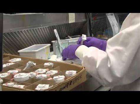 labcorp lab
