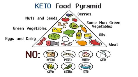 simply keto a practical approach to health weight loss with 100 easy low carb recipes books bodybuilding on a ketogenic diet anabolicco