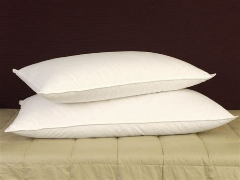 Pillowtex Pillows by Pillowtex And Feather Pillows Featured By Pillows
