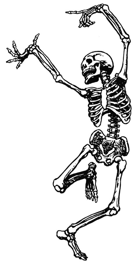 skeleton clipart deadly dungeons 20 skeleton room papers and pencils