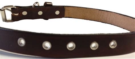 Handmade Leather Collars And Leads - handmade leather collar 1 quot wide