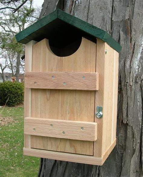 screech owl boxes