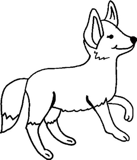 desert fox coloring page pin desert fox coloring page on pinterest