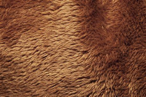 textures stuffed design with animals skin techfameplus