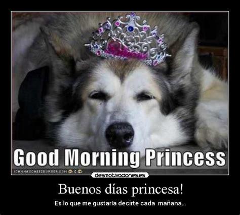 imagenes chistosas de buenos dias princesa buenos d 237 as princesa desmotivaciones