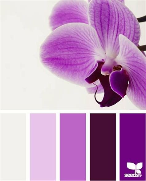 orchid colors 1000 images about radiant orchid pantone color of 2014 on