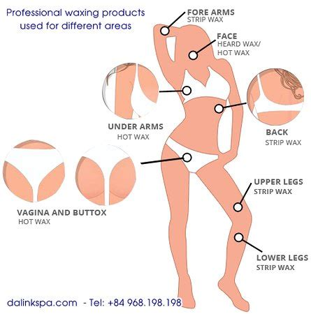 image of deffent kind of vigina different types of waxing for different areas picture of