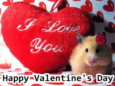 www day sms valentines day shayari in shayari masti