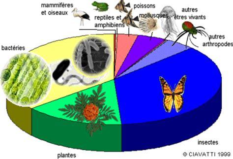 qu'est ce que la biodiversité? evolution biologique