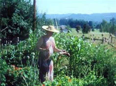 ruth stout and no till gardening without work gardensall