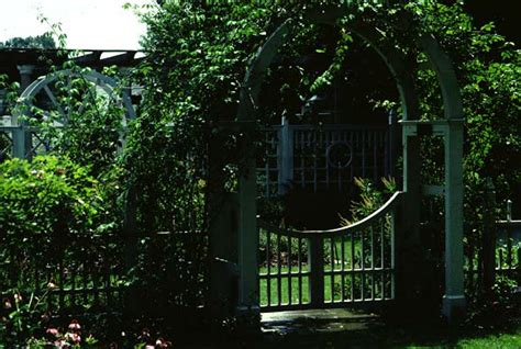 Wisteria Gardens Pearl Ms by Designing With Vines Mississippi State